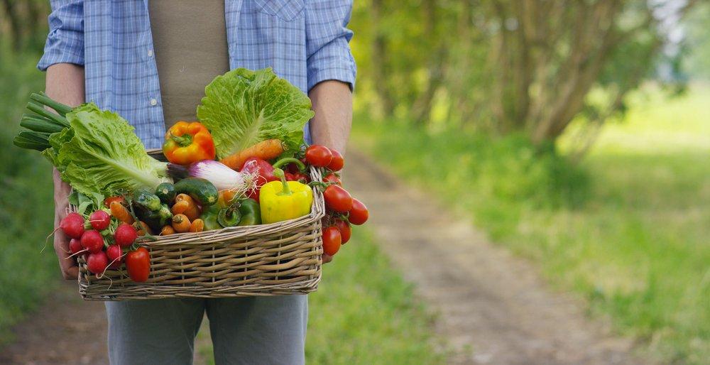 Como consecuencia del cambio climático los alimentos son menos nutritivos