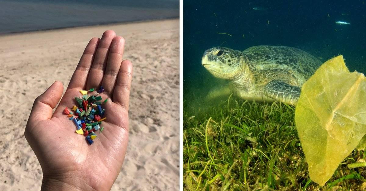 Hay una alfombra de microplásticos recubriendo el fondo del mar