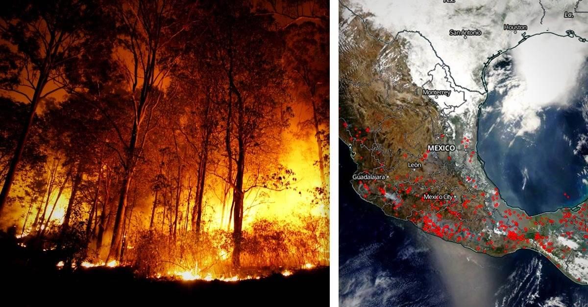 México en llamas: más de 100 incendios afectan al país