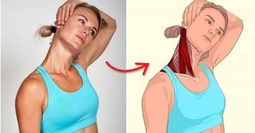 ¿Qué músculo se estira con cada ejercicio? Estas ilustraciones lo dejan en ..
