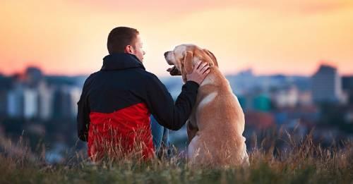 Estos son los 11 beneficios del amor incondicional según Buda