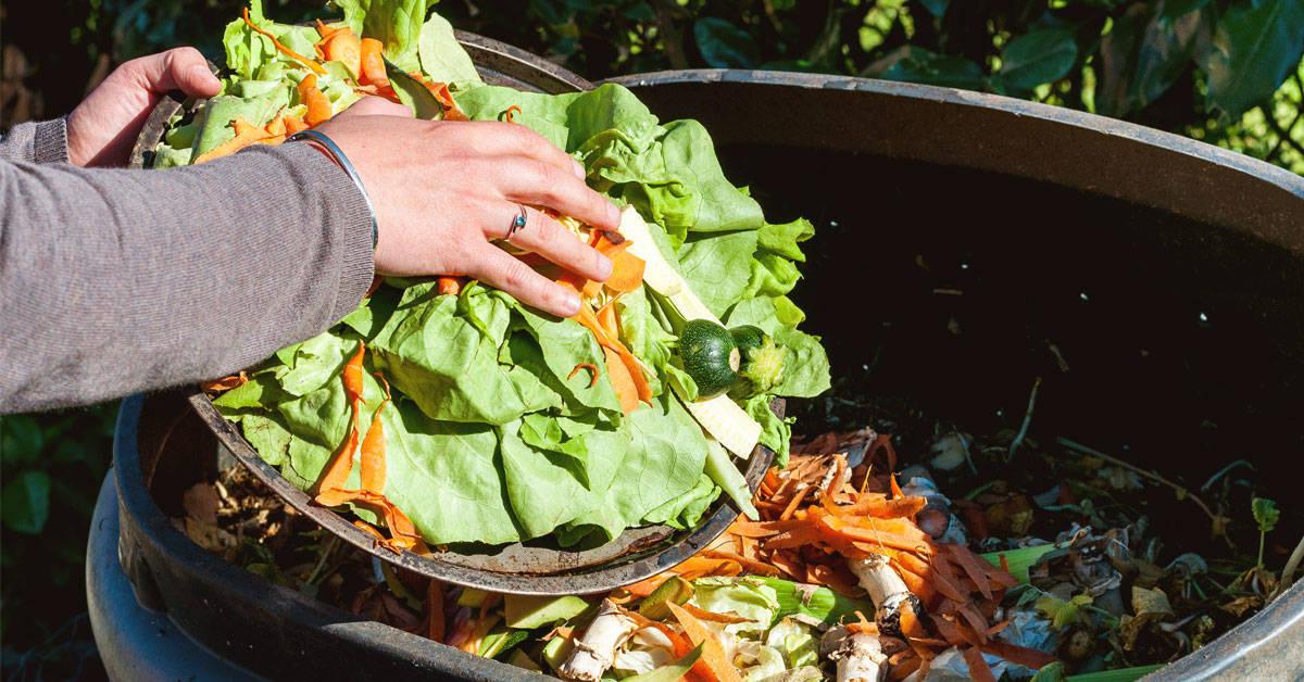 Zero waste: ¿podemos llevar una alimentación libre de desperdicios?