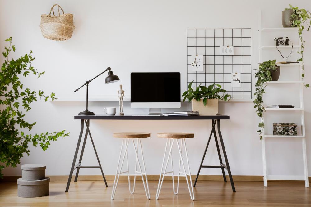 4 motivos por los que deberías tener plantas en el espacio de trabajo y estudio