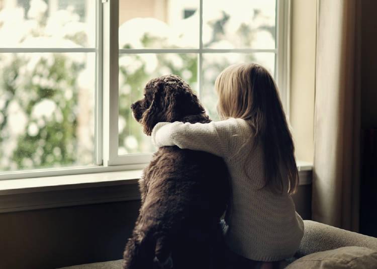 niña perro ventana cuarentena