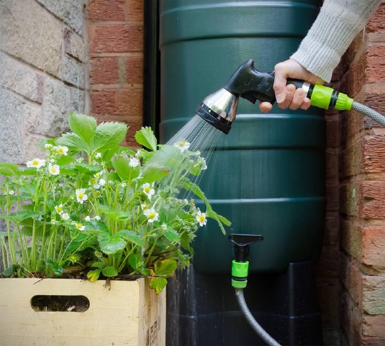 tanque agua lluvia jardin