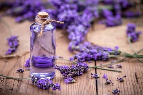 6 ideas para tener una casa perfumada todo el tiempo, de forma 100% natural
