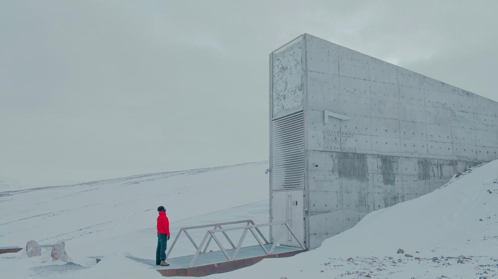 Bóveda de semillas en el Ártico: un patrimonio de la humanidad