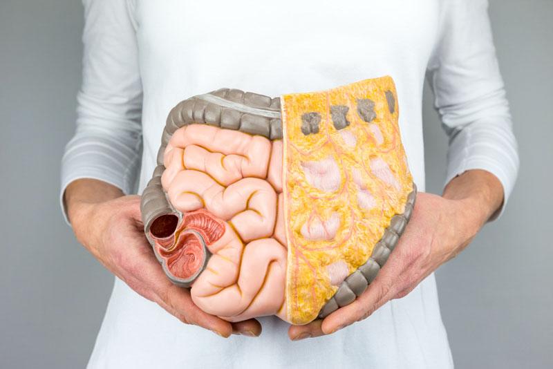 como mejorar la grasa visceral
