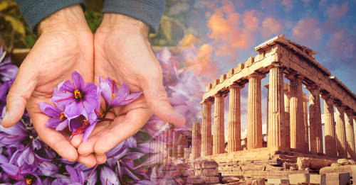 5 superalimentos antiguos que todavía son populares en Grecia