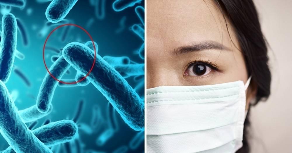 """¿Es posible una epidemia mundial? ¿Qué es la \""""Enfermedad X\""""?"""