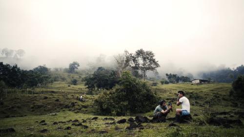 Sonic Forest: Un viaje musical al corazón del Pacífico colombiano
