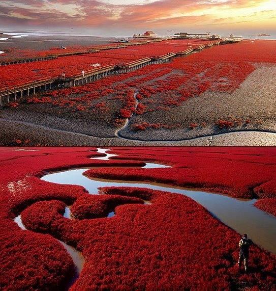 Lugares increíbles y surrealistas de nuestra Tierra