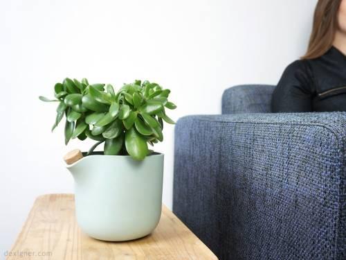Un macetero que te avisa cuando es hora de regar tus plantas