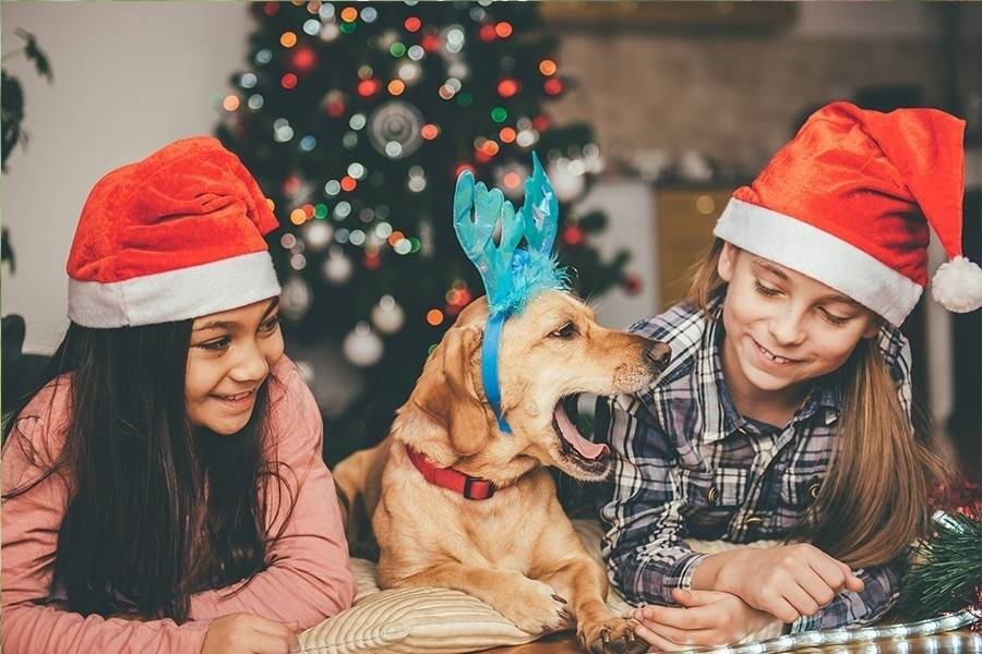 10 regalos diferentes para esta Navidad