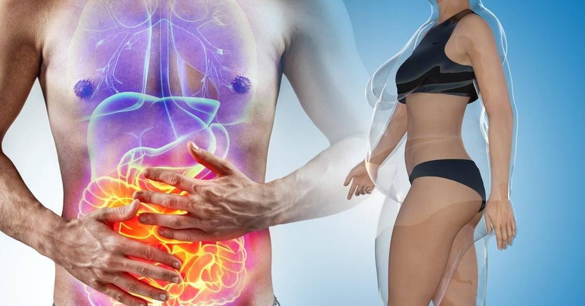 Cómo influyen las bacterias de tus intestinos en tu peso