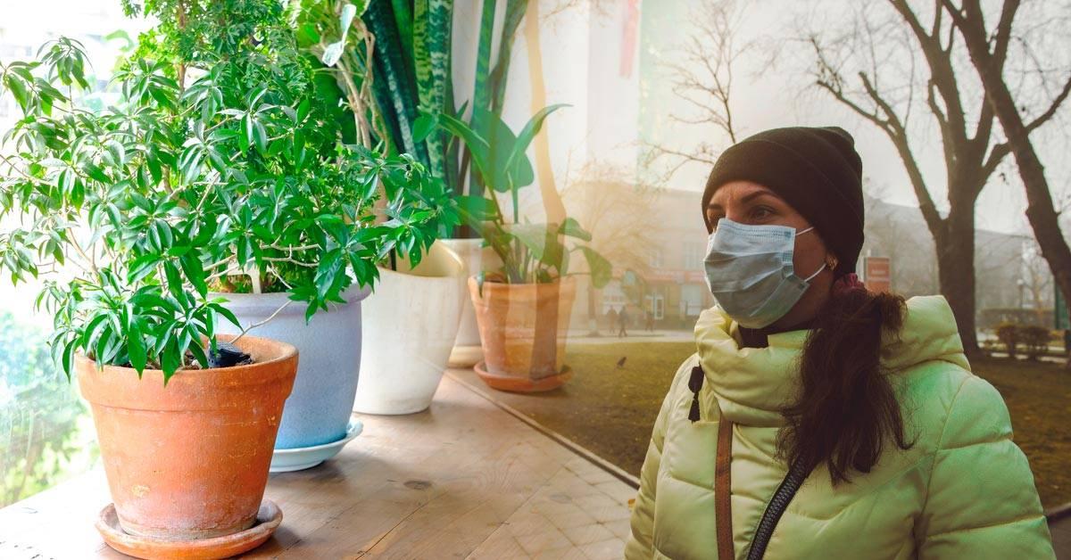 6 acciones que puedes tomar para mejorar el aire de tu ciudad
