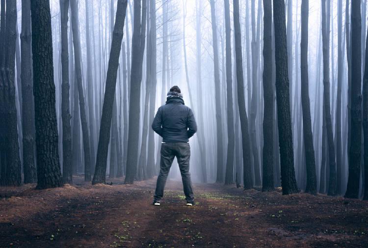 Hombre en un bosque