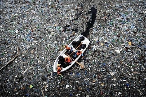 Una triste verdad: este es el año en que habrá más plástico que peces en e..