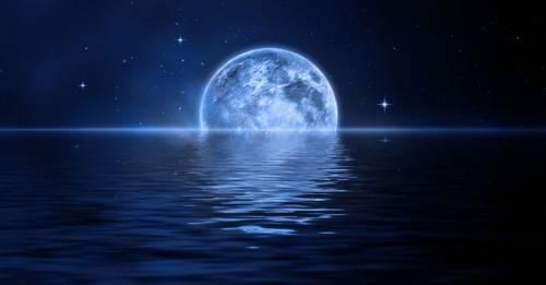 ¿Qué sucede en el océano a la noche?