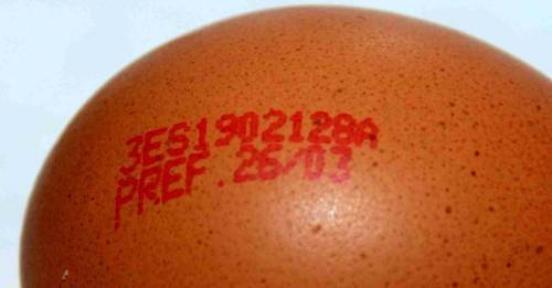 Cómo leer las etiquetas de los huevos