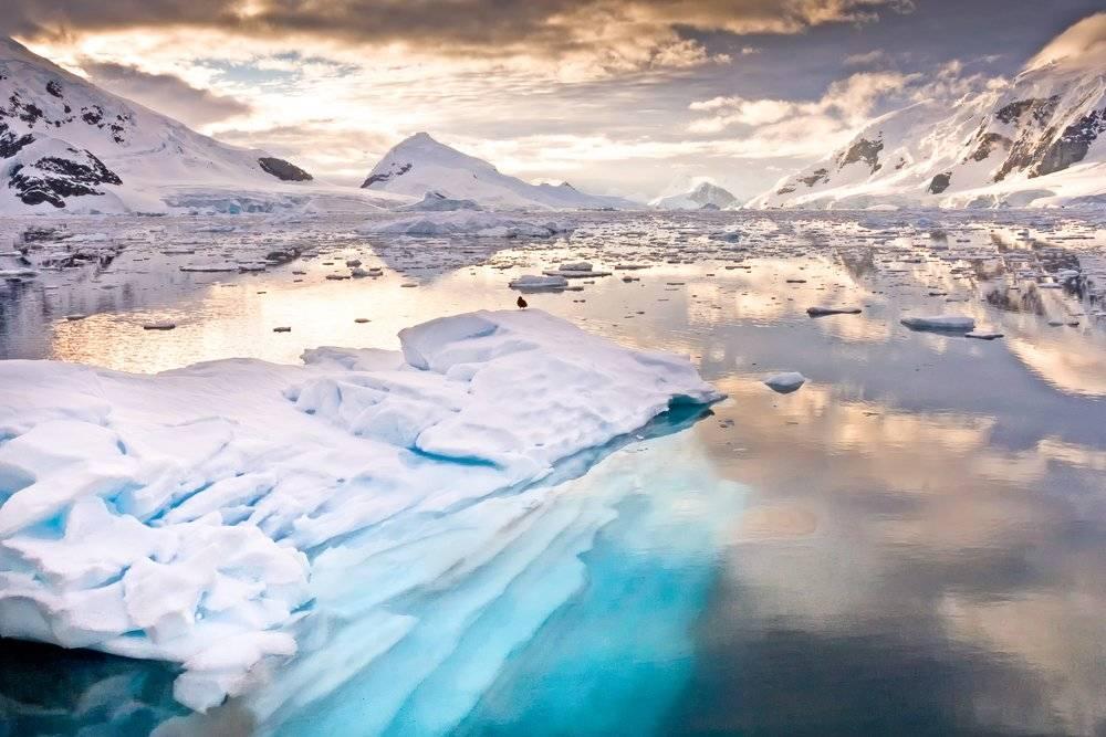 Por el planeta: un nadador británico atravesó un lago en la Antártida