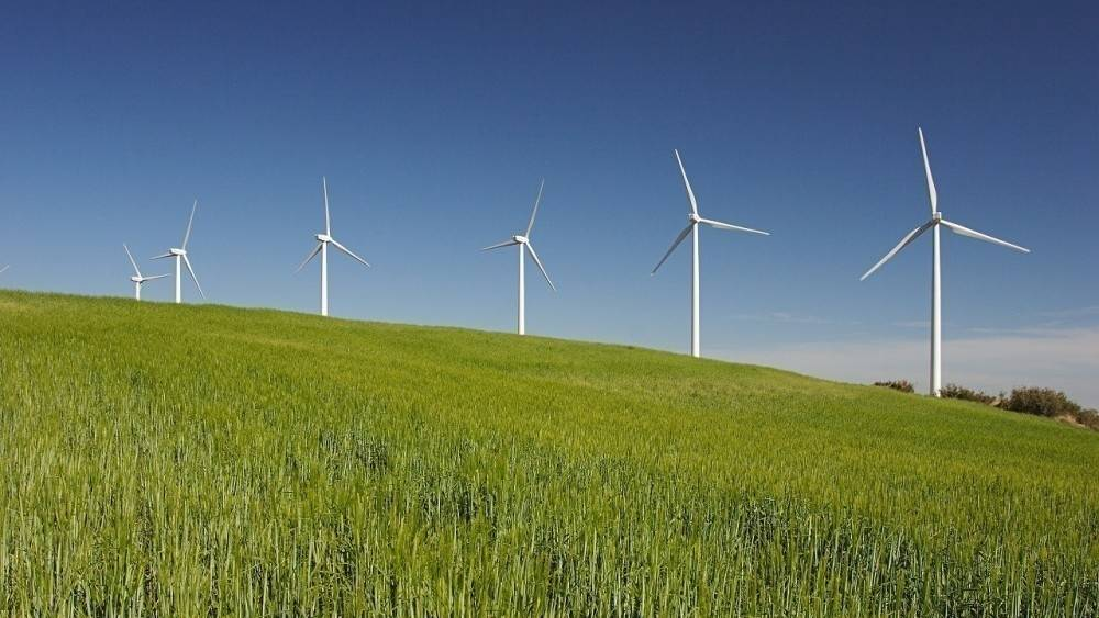 La energía renovable creció en todo el mundo