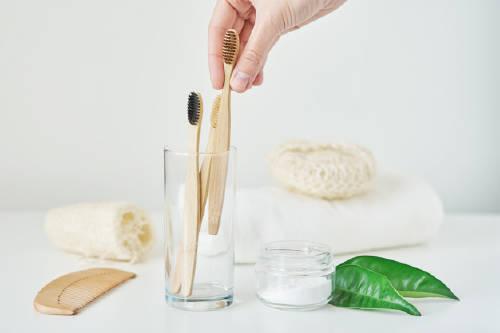 Bambú: suplente del plástico en los objetos cotidianos