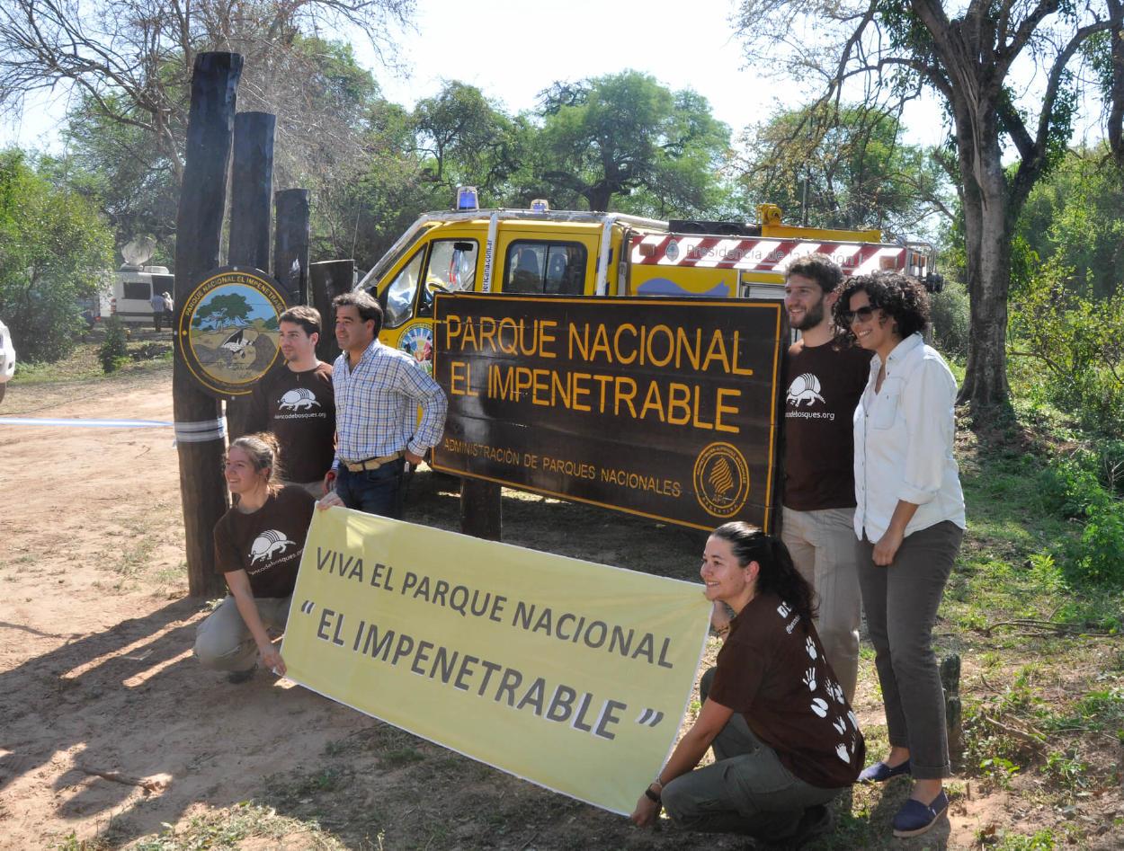 Conoce la ONG que lleva más de 10 años salvando m2 de bosque nativo en peligro