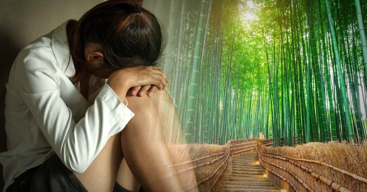 La fábula japonesa del bambú que debes leer cuando las cosas no salen como quieres