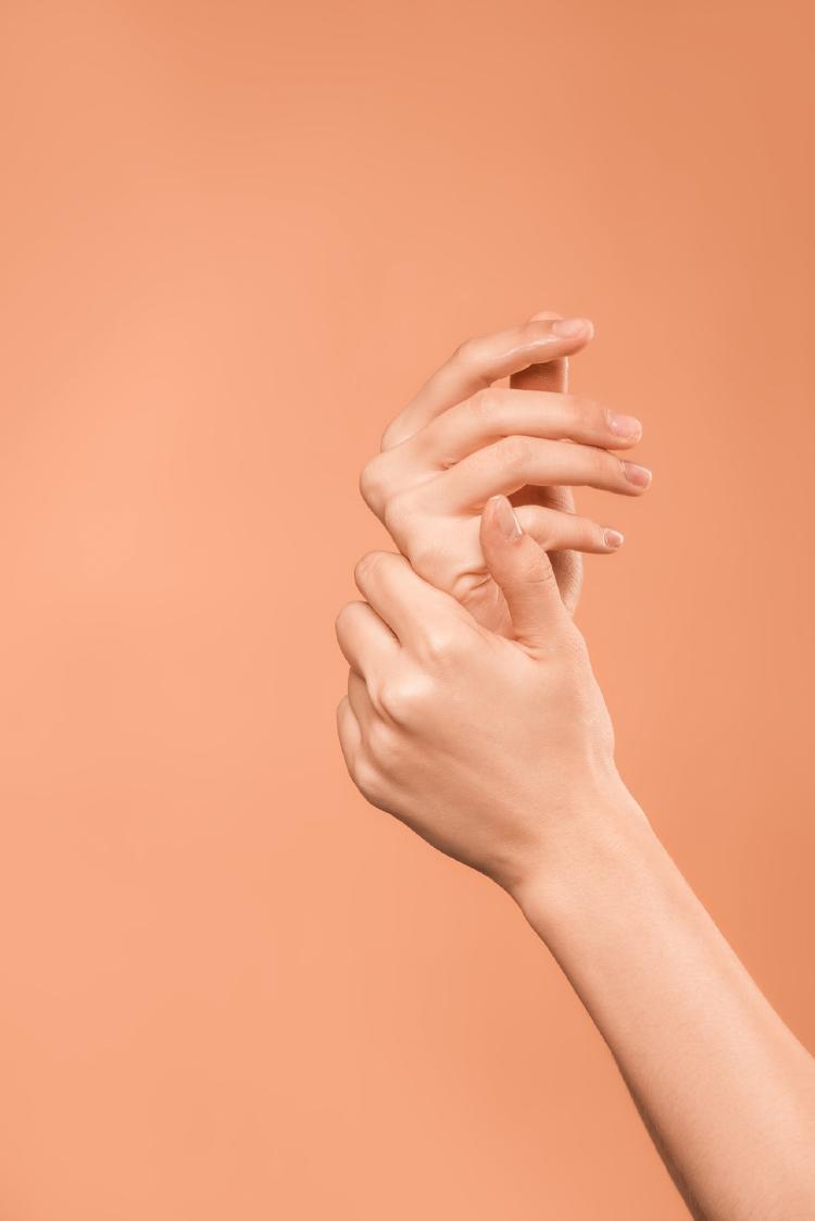Aceite de argán: Propiedades, beneficios y para qué sirve