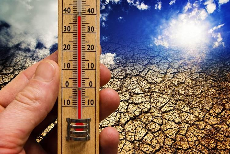 termómetro cambio climático calentamiento global