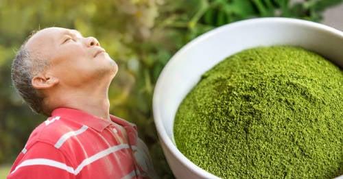 """Moringa: usos y beneficios del verdadero """"árbol de la vida"""""""