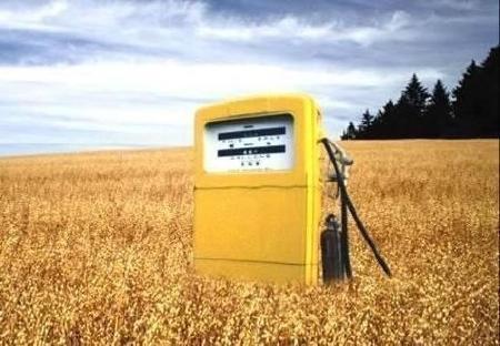 ¿Hay una realidad oscura detrás de los biocombustibles?