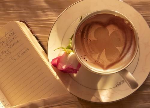 El café perfecto