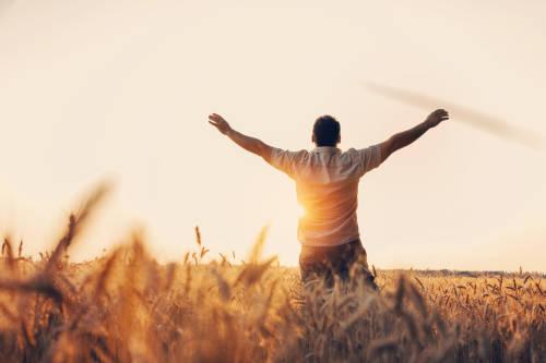 El buscador sincero: observamos y agradecemos