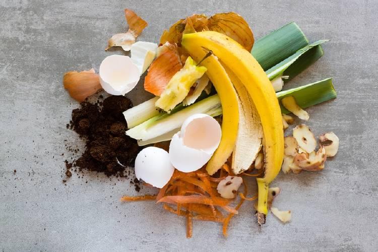 fertilizante con huevo platano cafe zanahoria