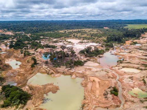 La deforestación de la selva Amazónica no se detiene por la pandemia