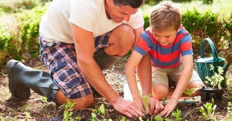 Así es como un huerto en casa estimula la imaginación e inteligencia de los niños