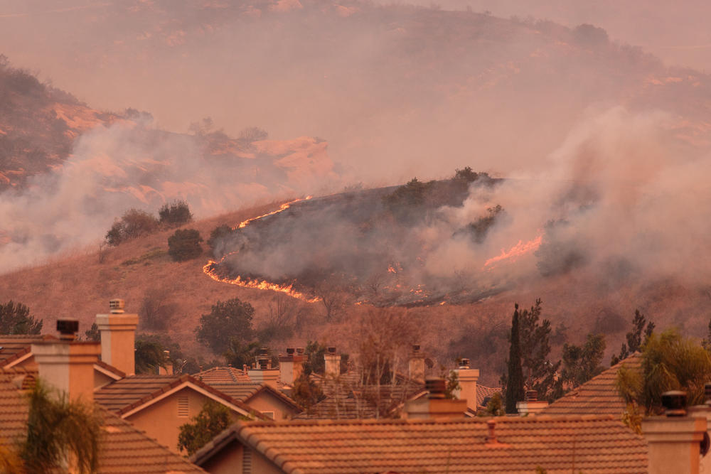 El parque estatal más antiguo de California ha sido devastado por los incendios forestales