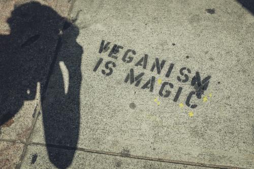 veganismo datos curiosos