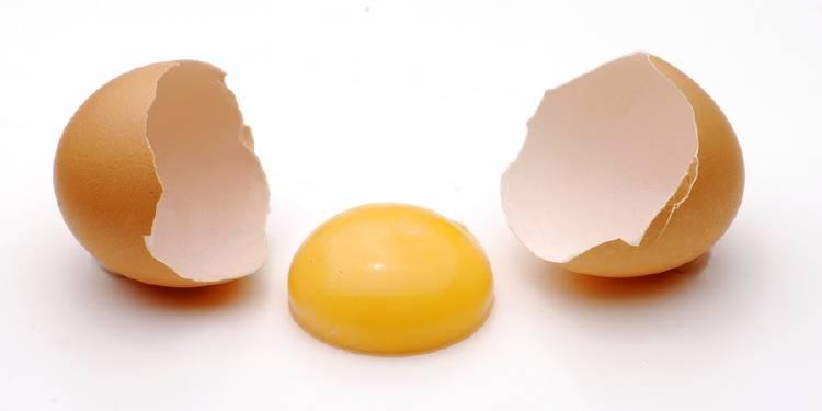 cascara rota de huevo con yema amarilla