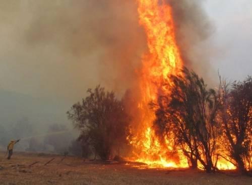 Uno de los mayores desastres ambientales de los últimos tiempos en Argentina