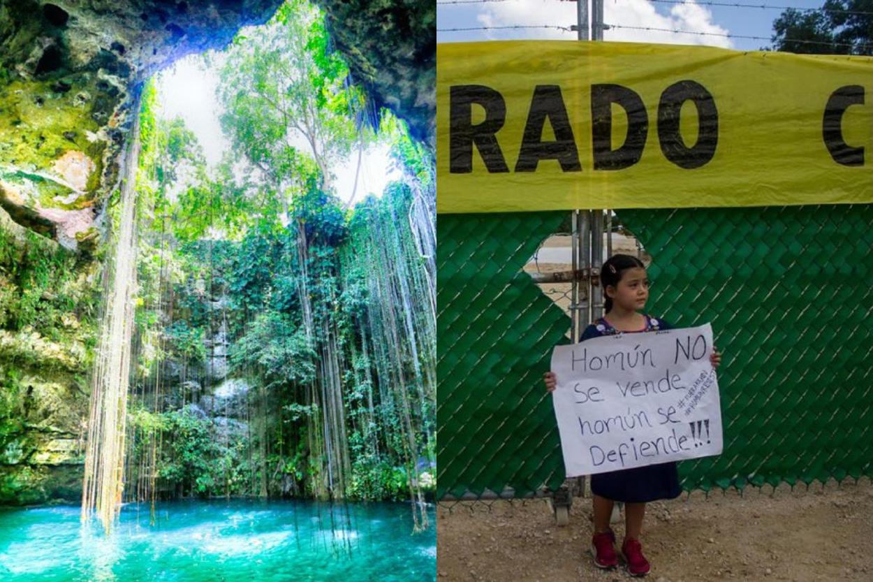 Grupo de niños logró cerrar una granja porcina que contaminaba el agua de los ce