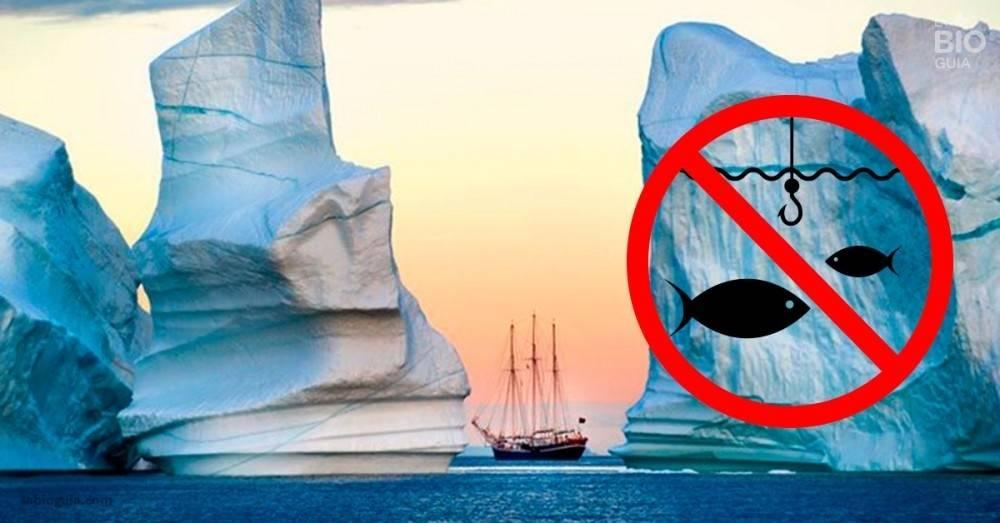 Las potencias mundiales lo hicieron: La pesca en el ártico quedará prohibida