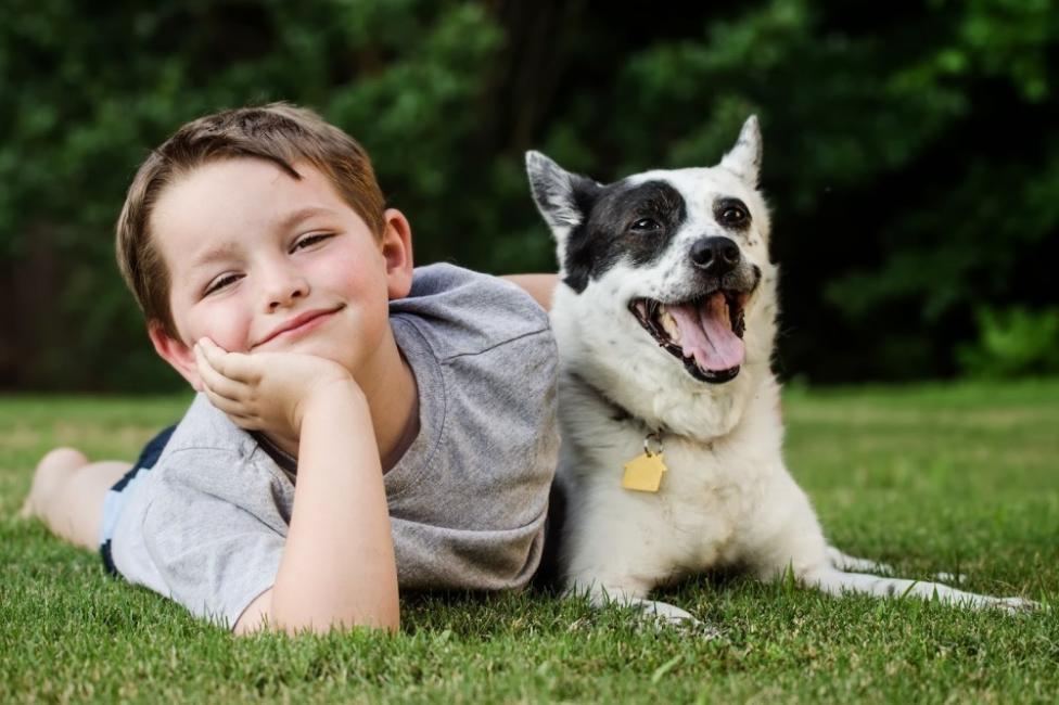 Las personas que poseen una mayor variedad de mascotas en la infancia respaldan más preocupaciones con respecto al uso de animales