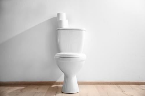 Día Mundial del Inodoro: 1 de cada 3 personas en el mundo no tiene baño