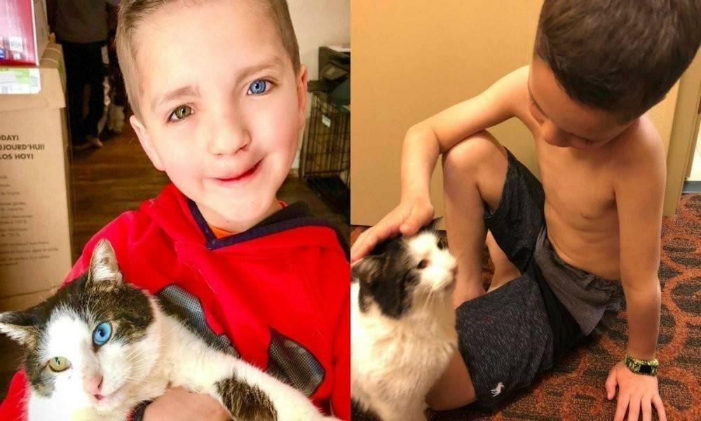 Este niño y su gatito fueron discriminados por lo mismo y ahora son mejores a..