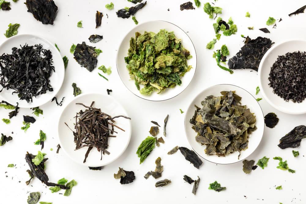 5 razones por las que deberías incluir algas en tu dieta