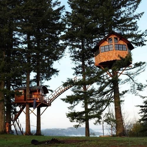 Un grupo de amigos construyó su propia casa del árbol en medio de un paraís..