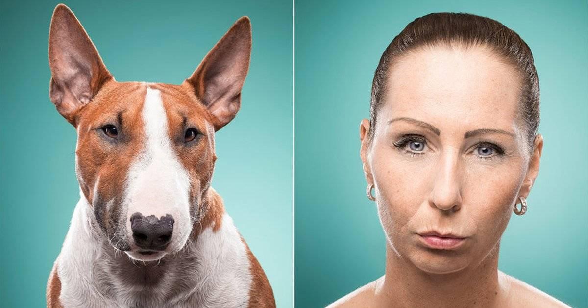La razón científica por la cual los perros se parecen a sus dueños